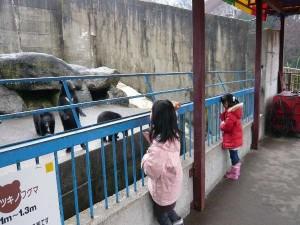 奥飛騨クマ牧場